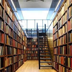 Библиотеки Черусти