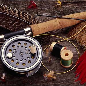 Охотничьи и рыболовные магазины Черусти